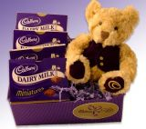 Cadburry n Bear