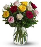 Multicolor Roses in vase