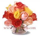 Mixed Rose