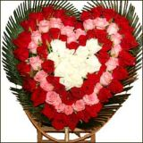 101pcs Red Pink & White ROSES Heart