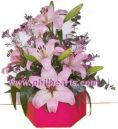 Lilies in attractive box