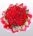 101 pcs Red Roses