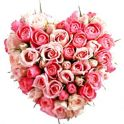 100 pink roses heart