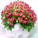 100pcs RED ROSES Heart