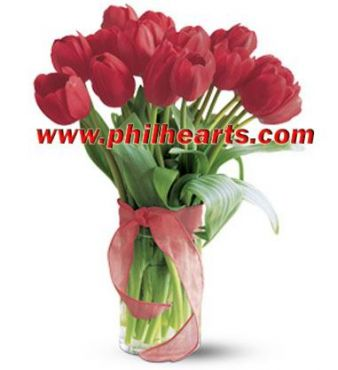 Send Valentines tulip to Philippines, send tulip to manila, valentine%u2019s tulip to Philippines, send gifts to Philippines, valentines tulip and chocolate to manila,  Philippines tulip and teddy to manila, valentines  gifts to Philippines, Philippines online flower delivery, cheap valentine%u2019s tulip philippines
